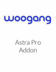 Astra Pro Addon For Astra Theme